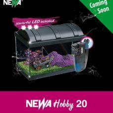 Acquari Newa